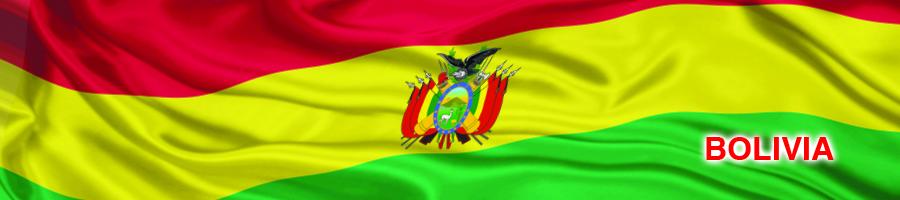Testigos, víctimas y sospechosos bolivia