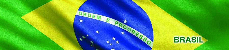 Medidas Cautelares y Def. Sobre Bienes Brasil