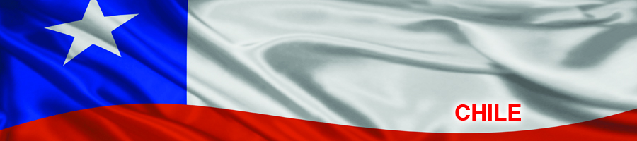 Medidas cautelares y definición sobre bienes Chile